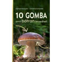 10 GOMBA AMIT BÁTRAN LESZEDHET!