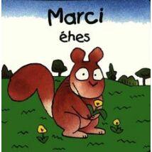 MARCI ÉHES